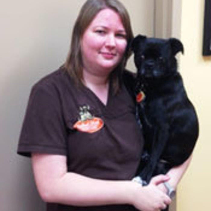 Miranda<BR>Registered Veterinary Technician  photo