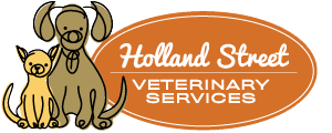 Holland Street Veterinary Services logo